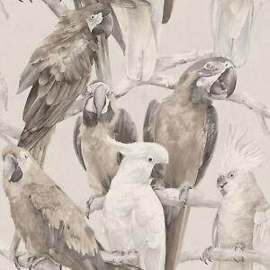 Rasch-Tapete-803105-Lucy-in-the-sky-Parrot-Bird-Non-Woven-Wallpaper-Fleece