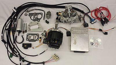 Jeep Fuel Injection Kit for 4.2L 258 CI Complete TBI Fuel EFI Conversion Kit  | eBayeBay