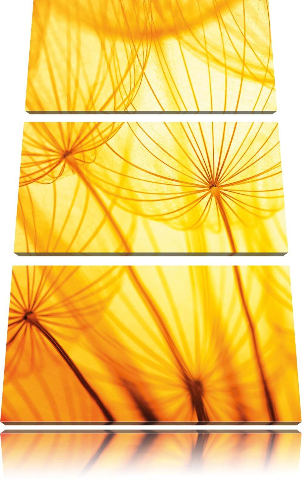 Pusteblumenblüten Im Giallogiallo Luce 3-Teiler Quadro su Tel Decorazione Parete
