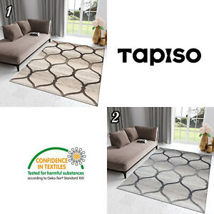 Teppich-Kurzflor-Beige-Grau-Modern-Gitter-Rechteckig-Designer-Wohnzimmer-NEU