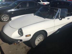 1978 Alfa Romeo Spider Volece