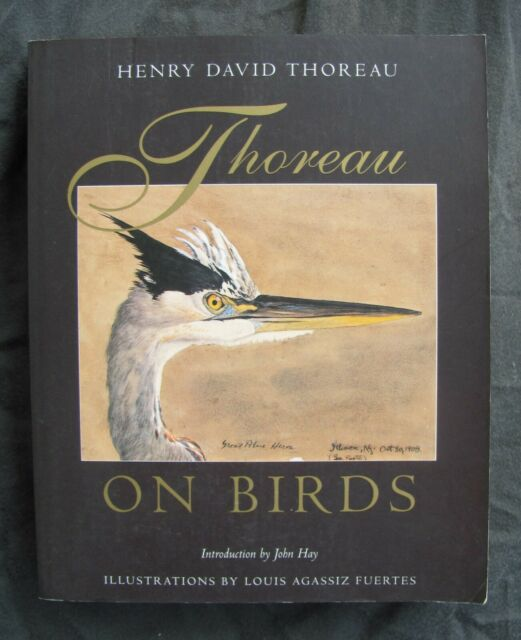 Thoreau on Birds by Henry Thoreau (1998, Paperback)