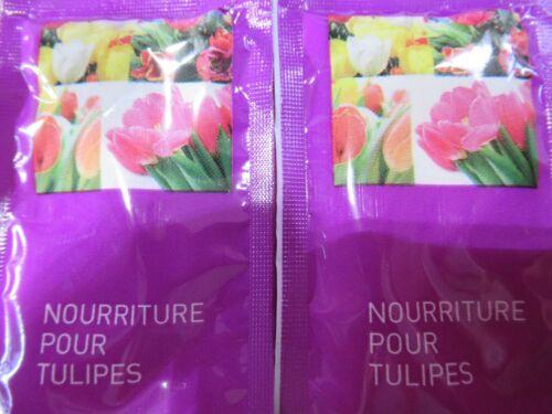 Blumenfrisch 40 x Rosen 40 x Tulpen 20 x Blumensträusse von Crysal Markenware