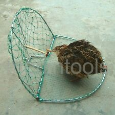 Bird, Pigeon, Quail Humane Live Trap Hunting