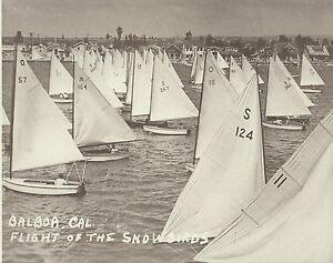 "NEWPORT BEACH Balboa SAILBOAT RACE 1940's Photo Print 1460 SNOWBIRDS 11"" X 14"""