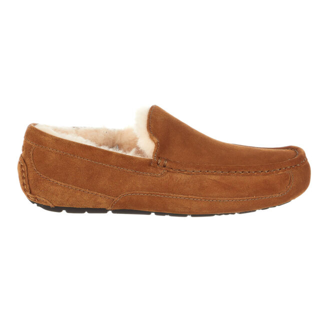 26c708e5ef9 UGG Australia Mens Ascot Suede Closed Toe Slip on Slippers Chestnut Size  8.0 1