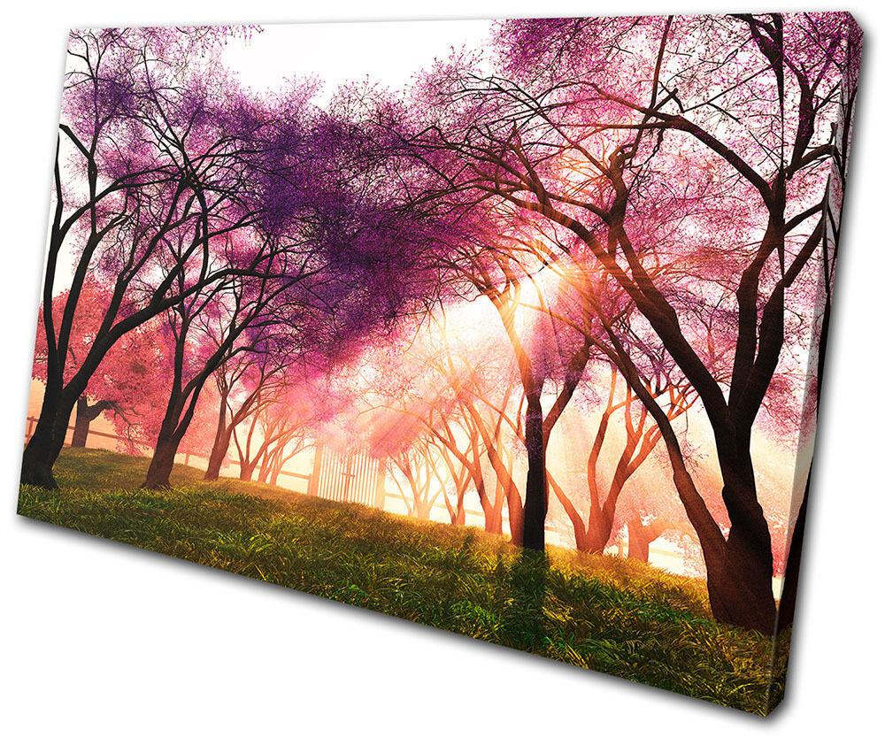 Landscapes Cherry Blossom SINGLE TOILE murale ART Photo Print