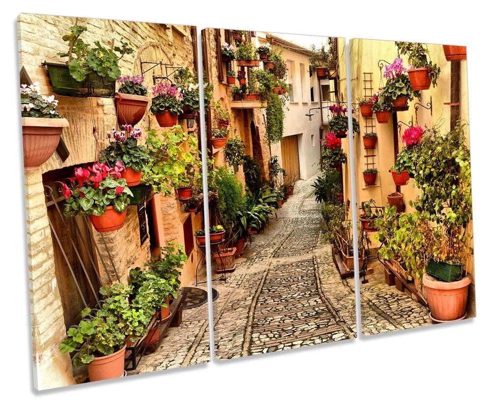 Mediterranean Village Picture TREBLE CANVAS WALL ART Print