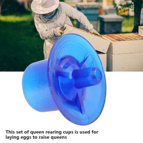50pcs Beekeeping Queen Rearing Cell Cups Bee Keeper Equipment Tool Supply Blue