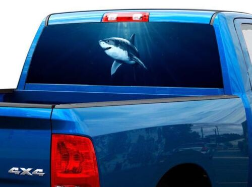 P507 Shark Rear Window Tint Graphic Decal Wrap Back Pickup Graphics