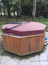 Hot Tub Cover Octogan - With Hot Tub Spa Cover Lifter