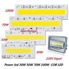30W 50W 70W 100W LED COB Bulb Lamp 220V IP65 Smart IC For DIY LED Flood Light