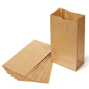 Details about 60 Brown Paper Lunch Bags, Snack Bags, Kraft Paper  Merchandise / Grocery bags