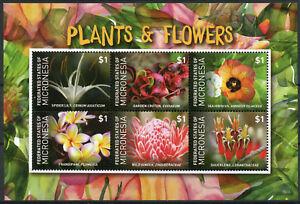 Micronesia-2015-Gomma-integra-non-linguellato-Piante-Fiori-Frangipani-Lily-Ibisco-6v-M-S-FLORA