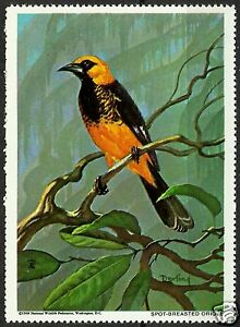 SPOT-BREASTED-ORIOLE-NATIONAL-WILDLIFE-FEDERATION-CINDERELLA-1968-MNH