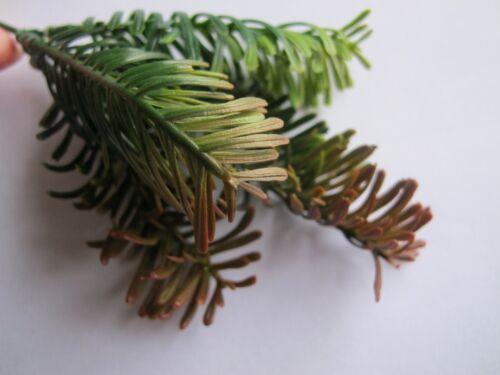 Miniature Palm Tree Bush Shrub Plant Green Brown Shade Doll house Q7