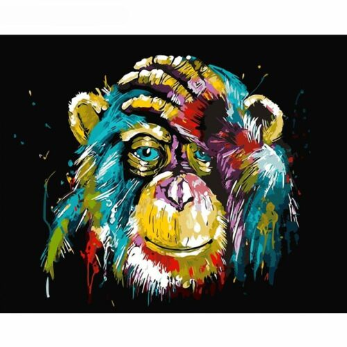 Colourful Monkey DIY acrylic Painting Picture Art Paint By Numbers
