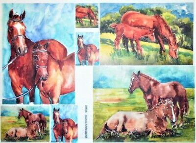 Rice Paper Decoupage Scrapbook Craft Sheet Paint Picture Horses 452