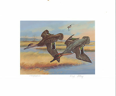 MAINE #5 1988 STATE DUCK STAMP PRINT GREEN WINGED TEAL by ...