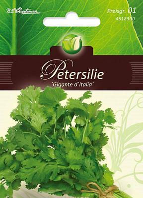 Petersilie,Gigante d´Italia,Petroselinum crispum,Gemüse,Chrestensen,PG1
