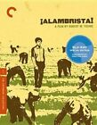 Criterion Collection Alambrista WS BLURAY