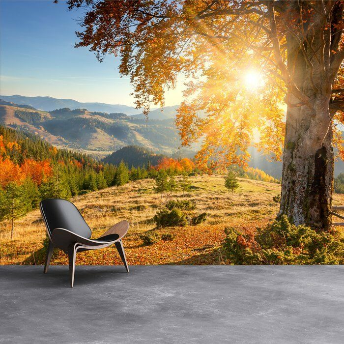 Berg Sonnenaufgang Fototapete Herbst Wald Tapete Wohnzimmer Haus Dekor