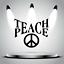 Teach Peace decal