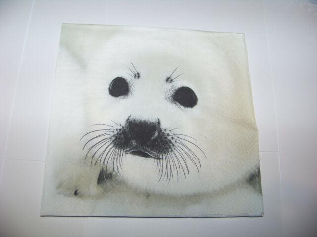 Servietten 20 Serviettentechnik Seal Robbe Seehund Ambiente 33 x 33