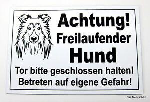 Dekoration Achtung Freilaufender Hund,sheltie,gravur Schild,12 X 8 Cm,hundeschild,warnung Profitieren Sie Klein Haustierbedarf