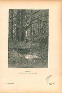 La-Foret-de-Dinard-par-Georges-Montbard-Peintre-GRAVURE-ANTIQUE-OLD-PRINT-1910