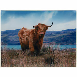 Highland-Cow-Glass-Chopping-Cutting-Board-Food-Kitchen-Utensil-Worktop-Saver