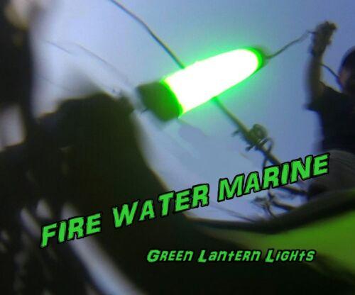 12V MAXX LED GREEN UNDERWATER SUBMERSIBLE NIGHT FISHING LIGHT crappie ice squid