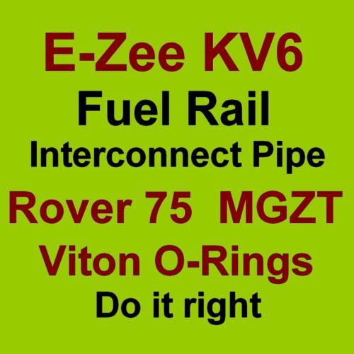 KV6 RAIL CARBURANTE tubo di interconnessione Viton O-RING GUARNIZIONI PER ROVER 75 e MG ZT V6