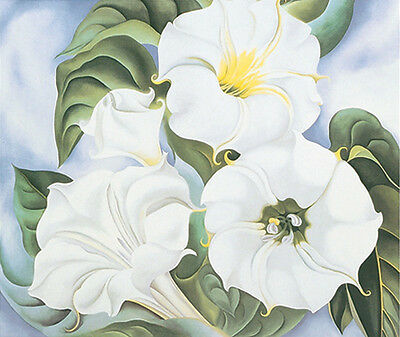 1924 by Georgia O/'Keeffe Poster 11x14 From the Lake No.1 FLORAL ART PRINT