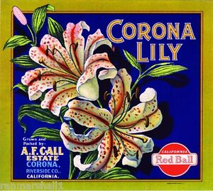 Corona Riverside County Lily Flower #3 Orange Citrus Fruit Crate Label Art Print