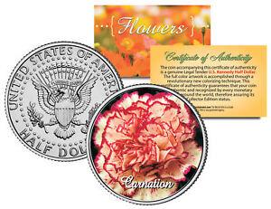 CARNATION-FLOWER-JFK-Kennedy-Half-Dollar-U-S-Colorized-Coin