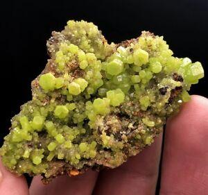 28g-Precious-Lush-Green-Pyromorphite-Crystal-Cluster-Mineral-Specimen