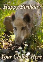 Boar All Occasions A5 Personalised Greeting Card Birthday PIDFF10 With GIFTS