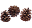 10-Pine-Cones-6-8cm-For-Christmas-Wreath-Making-amp-Handmade-Decorations-Craft thumbnail 1