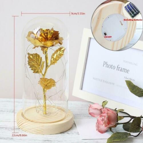 """6-Colour /""""Beauty And The Beast/"""" Red Rose In A Glass Dome On A Wooden Base For Va"""