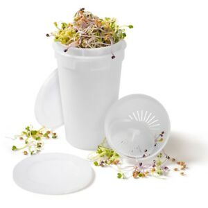 Easy Sprout Sprouter - for Beans, Seeds & Wheatgrass - Sproutamo EasySprout Jar