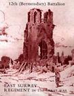 History of the 12th (Bermondsey) Battalion East Surrey Regiment by J.Aston and L.M.Duggan (Hardback, 2006)