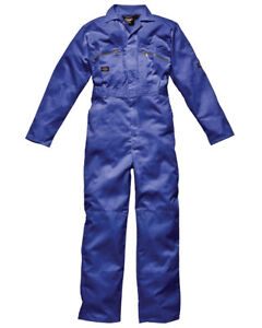 Dickies Wd4839 Suit Size Mens Coverall Overall Royal 36r Work Front Boiler Zip Ow5RqUF