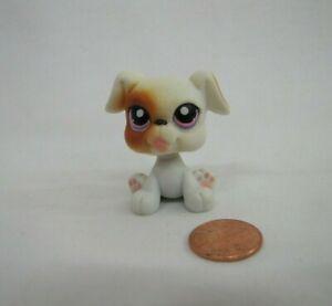 Littlest Pet Shop Lps 84 White Tan Boxer Puppy Dog Lavendar Purple Eyes Ebay