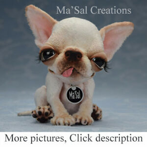 Ma-039-Sal-original-Dolly-Doggy-Smoot-Coat-Apple-Head-Cream-White-Chihuahua-puppy
