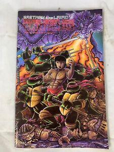 Teenage-Mutant-Ninja-Turtles-Volume-1-Number-18-Feb-1989-Eastman-And-Laird