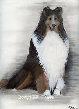 Dog Art,Pencil&Ink ,Rough Collie Prints, by P K Ufnal