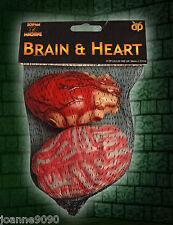 HALLOWEEN ZOMBIE HORROR PLASTIC FAKE BLOODY BRAIN AND HEART SURGEON COSTUME PROP