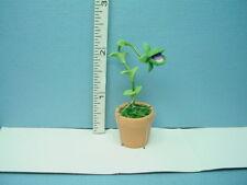 Miniature Red Chile Plant A1152 in Terra Cotta Pot Bright Delights  1//12th Scale