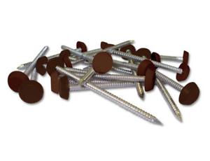Gris Anthracite Poly PINS Fascia Fixation PINS 30 mm Petite tête en plastique Sac de 50